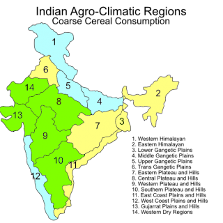Indian agroclimatic zones – coarse cereal consumption