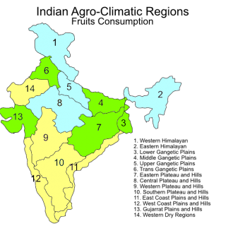 Indian agroclimatic zones – fruit consumption