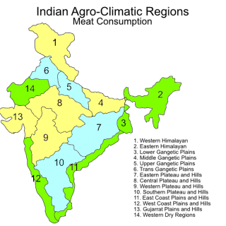 Indian agroclimatic zones – meat consumption