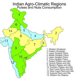 Indian agroclimatic zones – pulses and nuts consumption